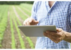 Promote Agricultural Food Safety with Produce Traceability from T3 Technologies